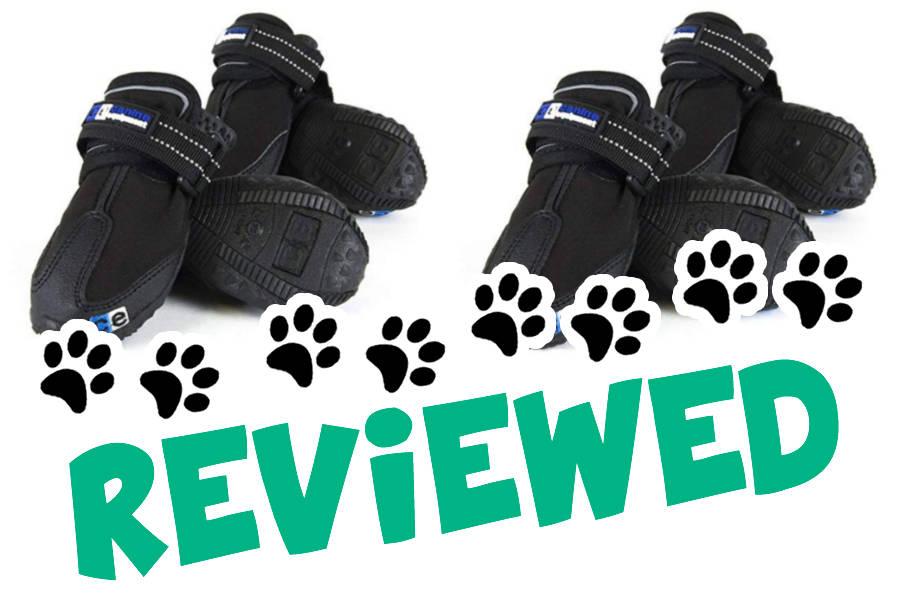 Canine Equipment Ultimate Trail (Photo: Amazon)