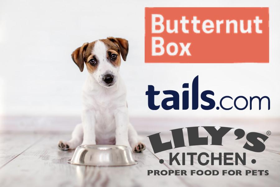 Best Dog Food Delivery UK 2019