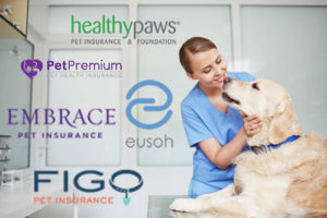 The Best Pet Insurance For Dogs 2019