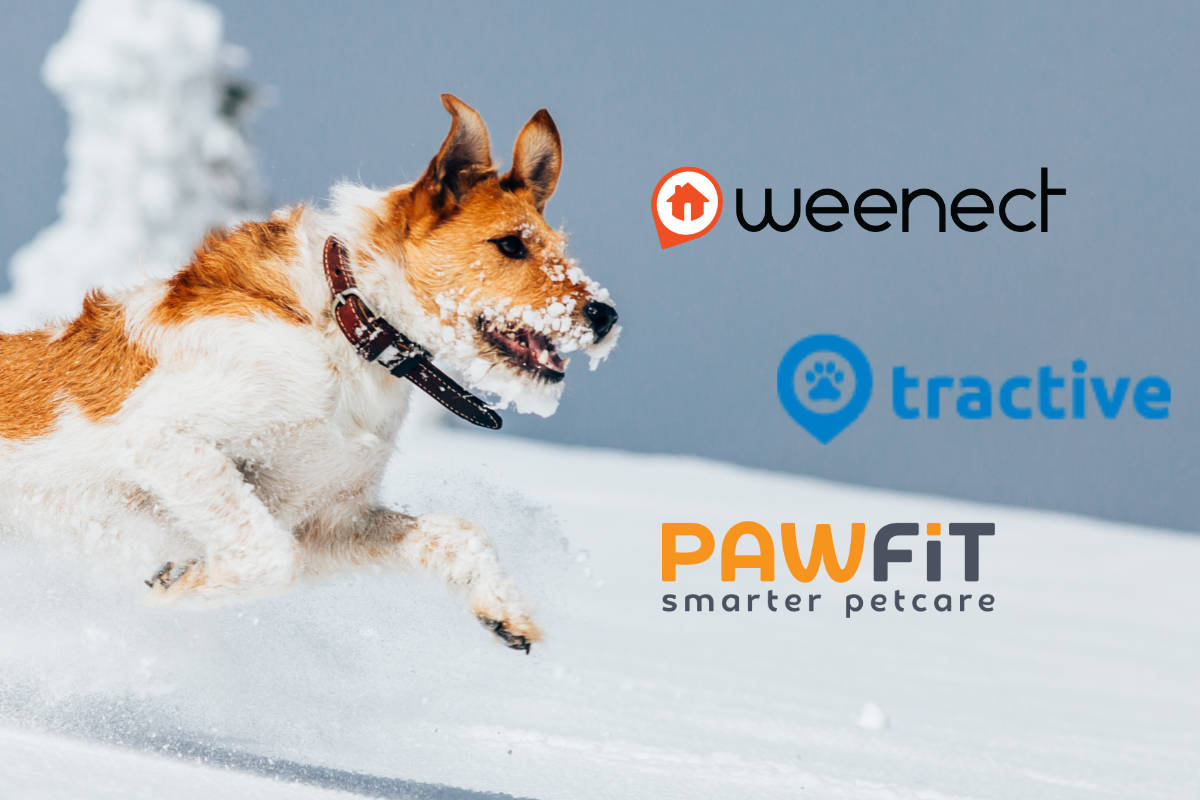 best dog tracker UK