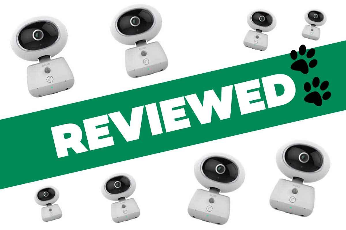 Bioxo Pet Camera Review