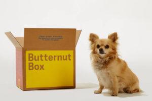 Butternut Box review