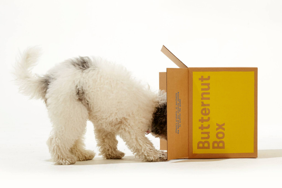 Butternut Box delivers your dog food twice a week (Photo: Butternut Box)