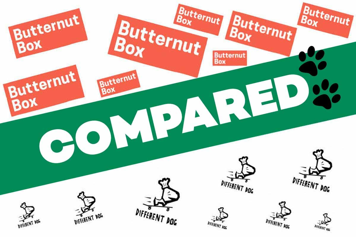 Butternut Box vs Different Dog Reviews