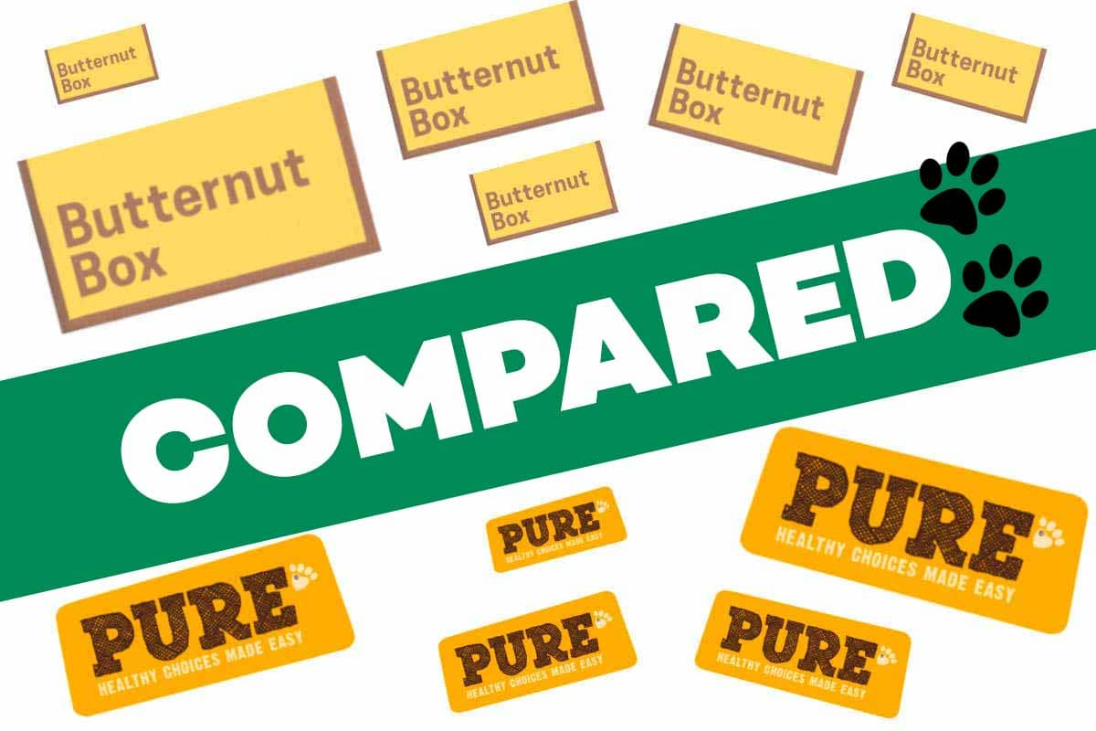 Butternut Box Vs Pure Pet Food Reviews