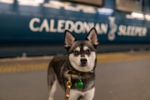 Caledonian Sleeper review