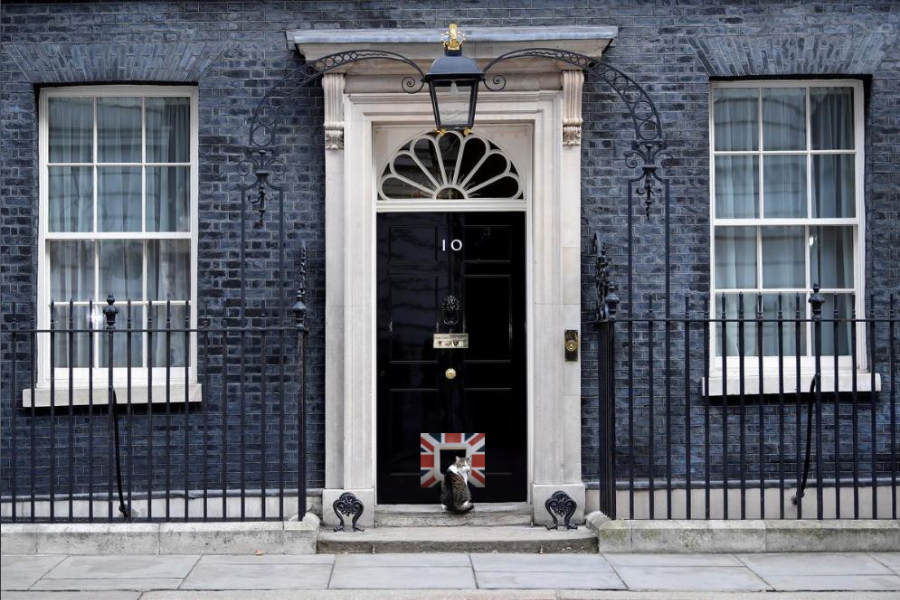 A Glamflaps 'Le Brexit' cat flap has been installed in the door of Number 10 (Photo: Glamflaps)