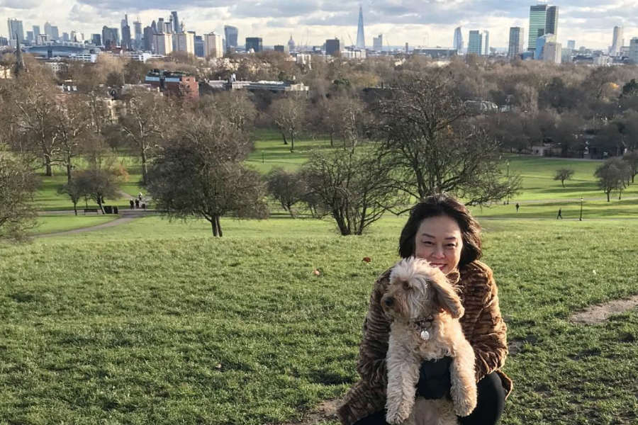 Miss Darcy at Primrose Hill (Photo: missdarcysadventures / Instagram)