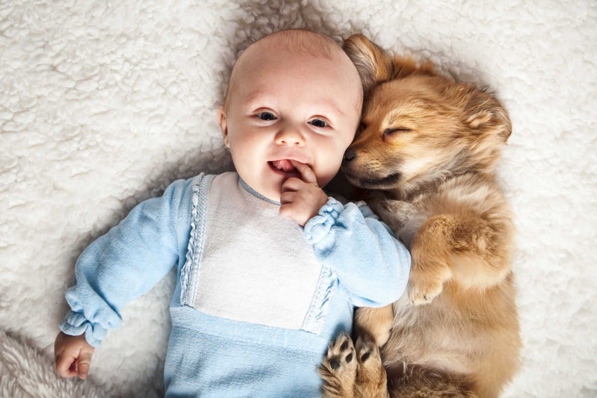 Baby cuddles with Doxie puppy (Photo: Adobe Stock)