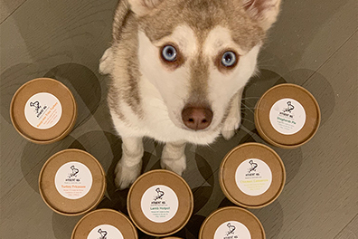 Copper with his Different Dog pots (Photo: lifewithkleekai / Instagram)