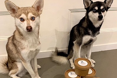 Copper and Skye with their Different Dog pots (Photo: lifewithkleekai / Instagram)