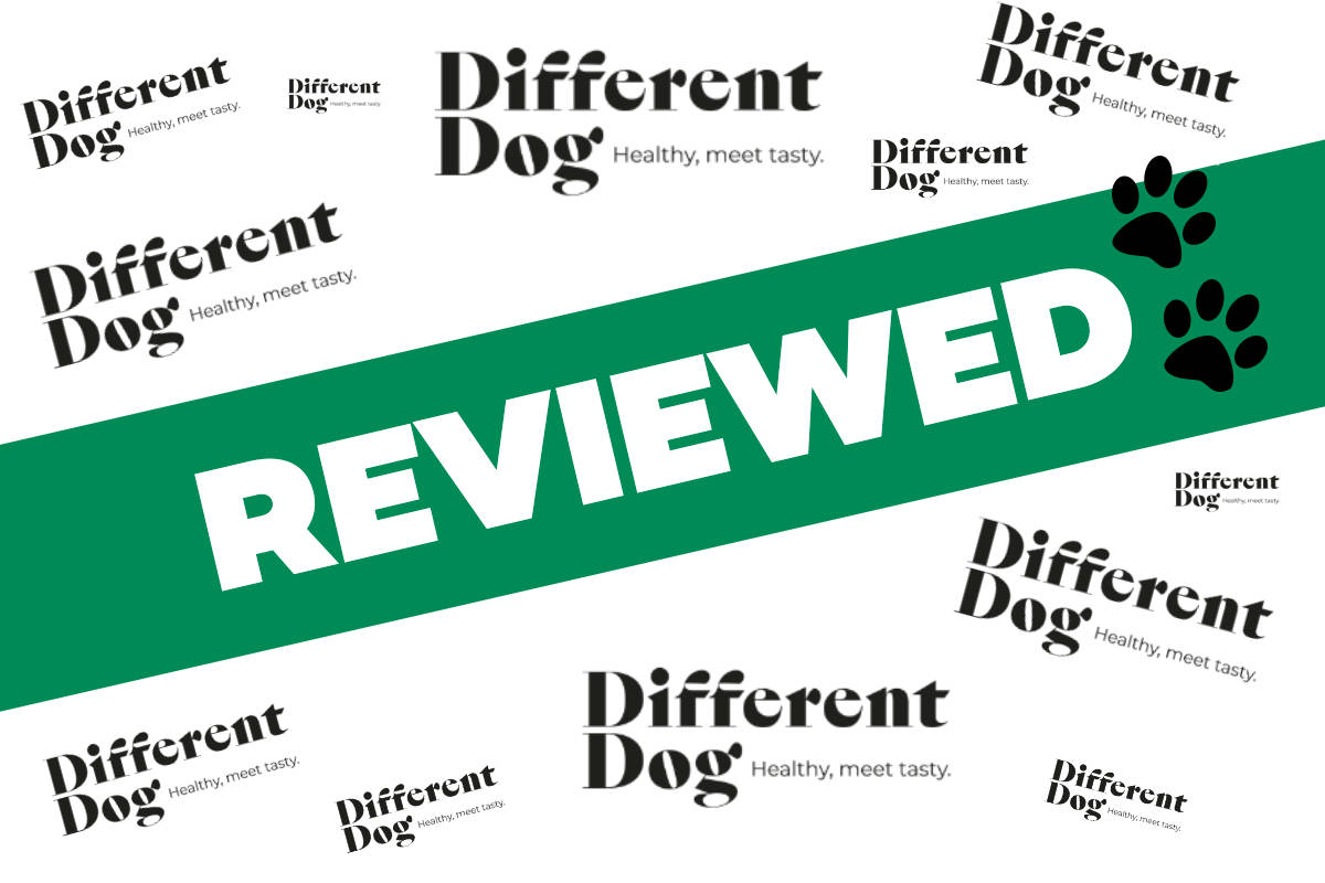 Different Dog review