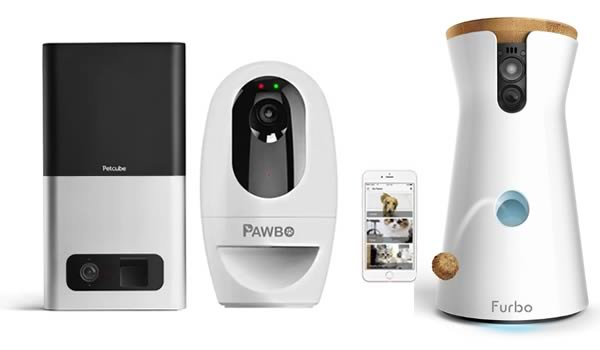 Wansview Wi-Fi Camera review - helloBARK!