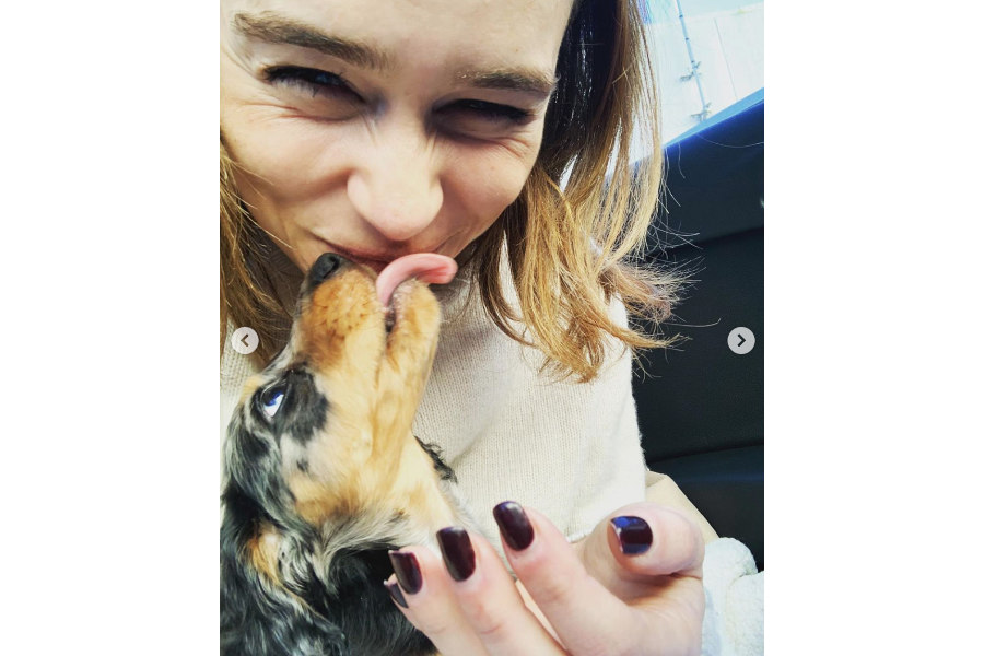Emilia Clarke with her new Dachshund puppy Ted (Photo: Emilia Clarke / Instagram)