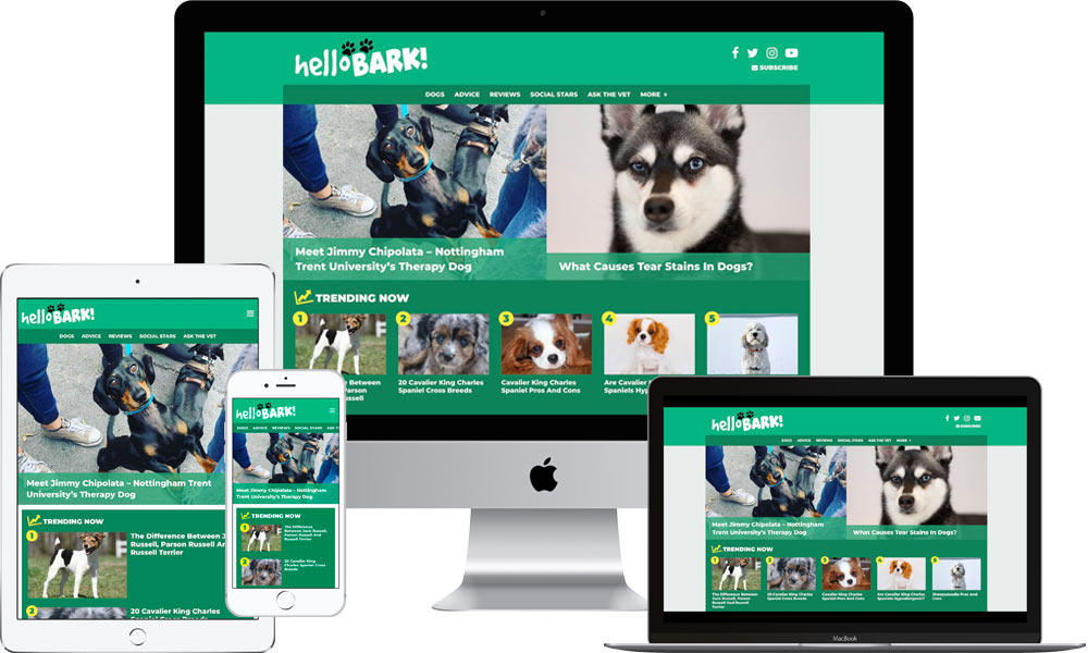 helloBARK! Website on devices