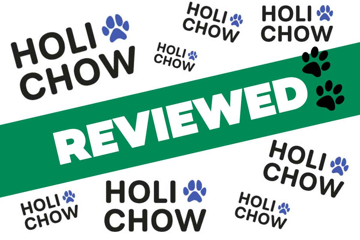 Holi Chow Review