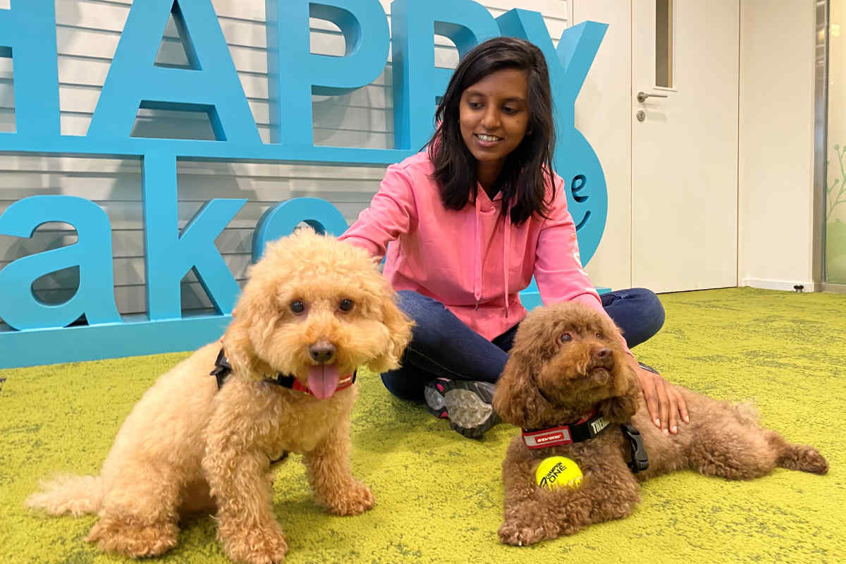 A therapy dog session at Hong Kong University of Science and Technology (Photo: HKUST)