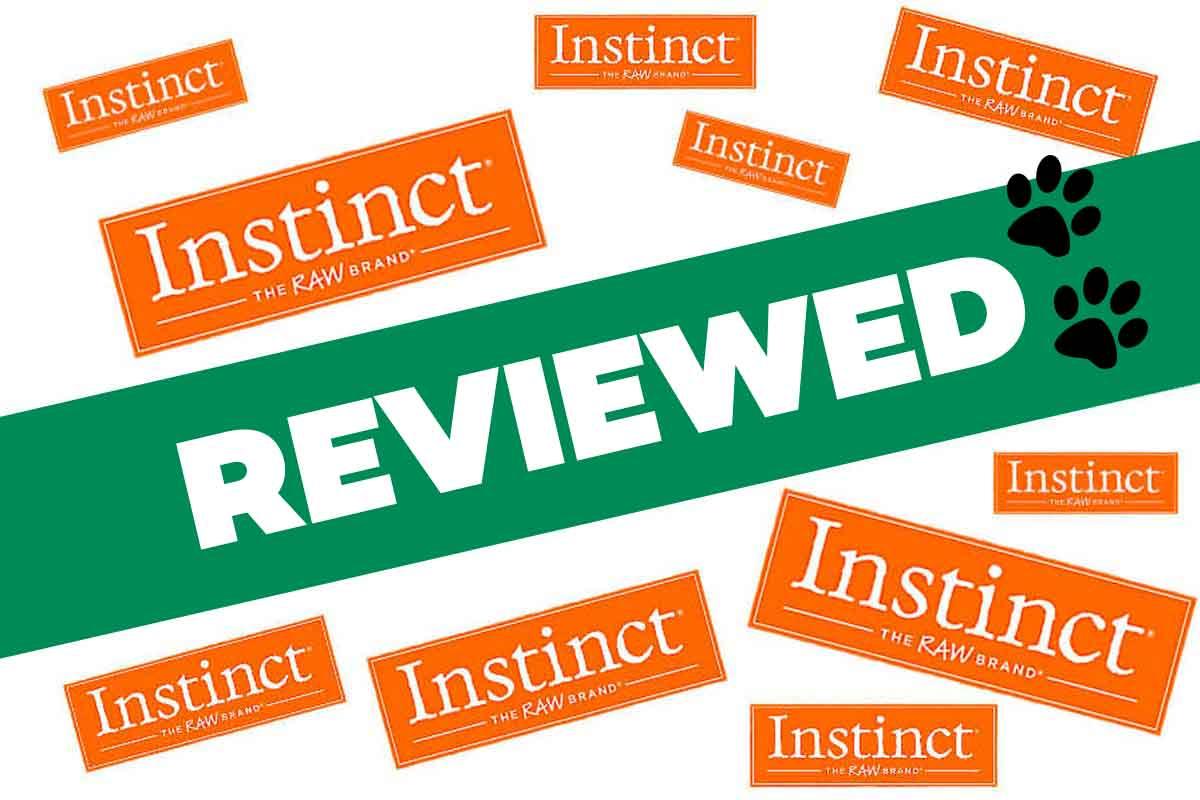 Instinct Raw Dog Food Review