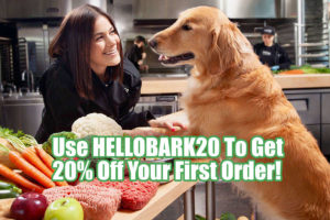 Is There A Just Food For Dogs Coupon Code Or Discount?