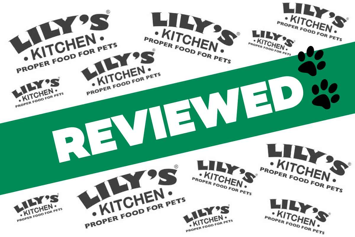 Lily's Kitchen Review