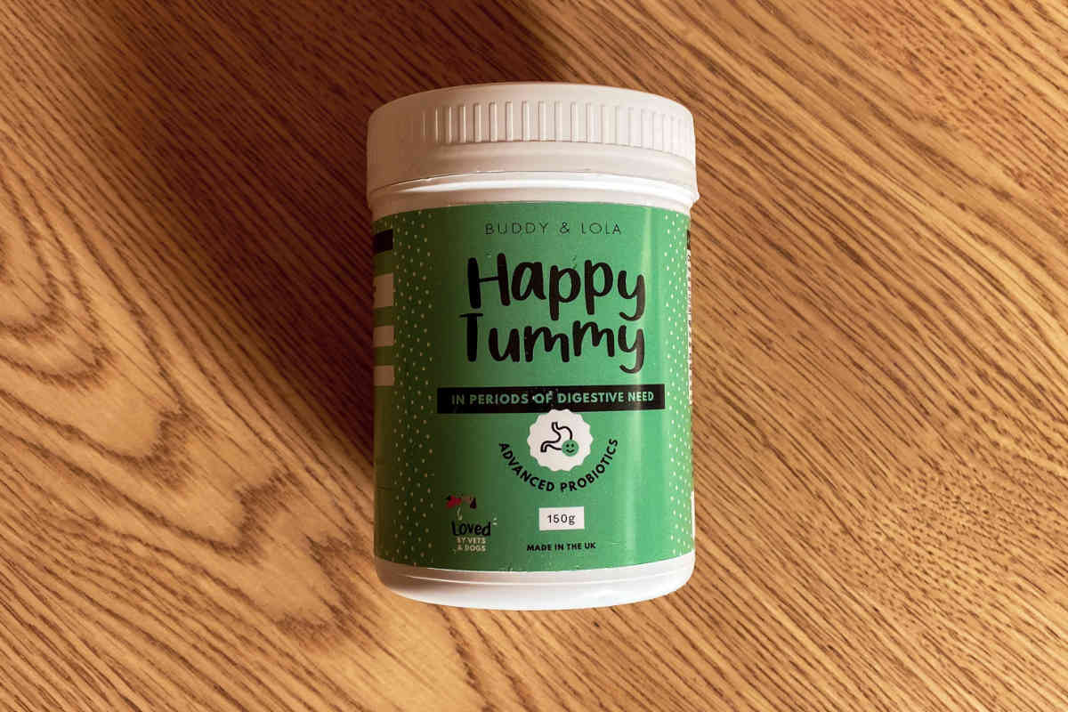 Happy Tummy by Buddy & Lola (Photo: Buddy & Lola)