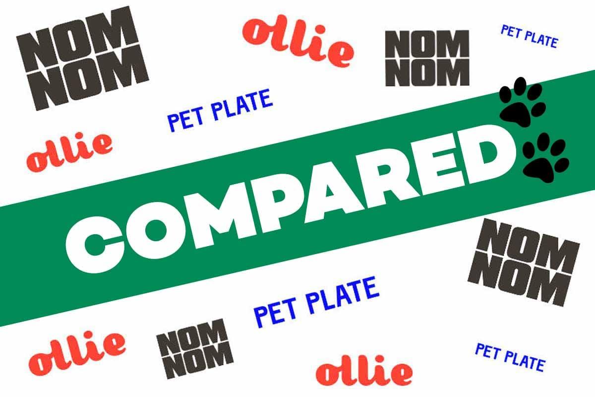 NomNom vs Ollie vs Pet Plate