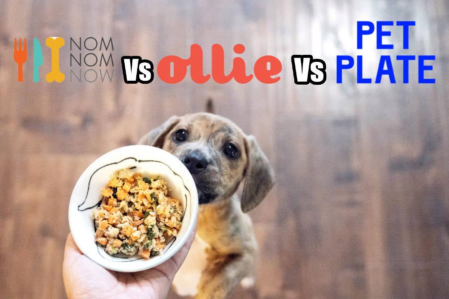 Nom Nom vs Ollie vs Pet Plate