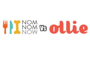 NomNomNow Vs Ollie Reviews