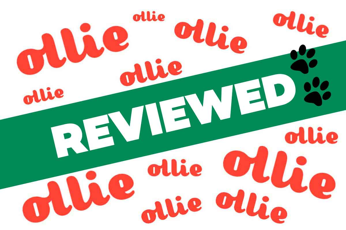 Ollie Review
