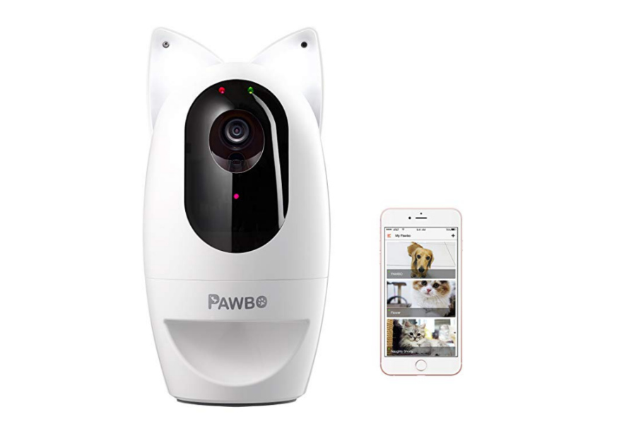 Pawbo Life Wi-Fi Pet Camera + Pawbo Flash Combo Set (Photo: Pawbo)