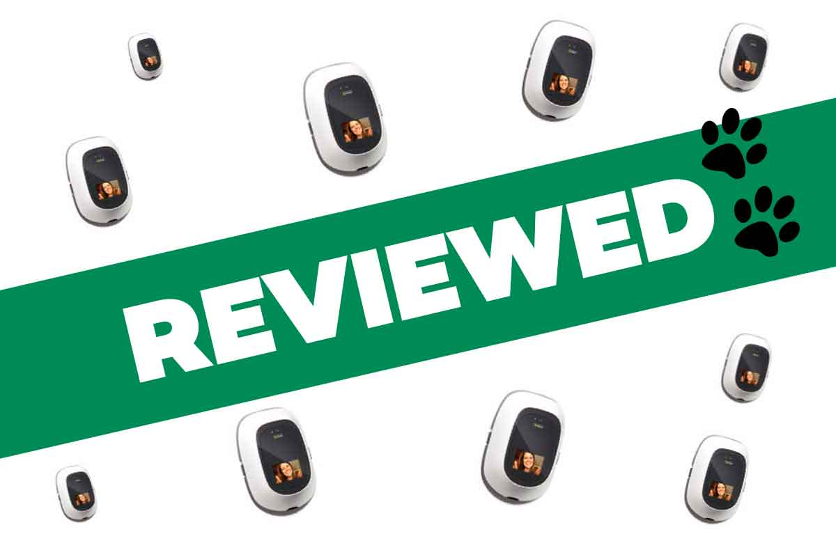 PetChatz HD Review