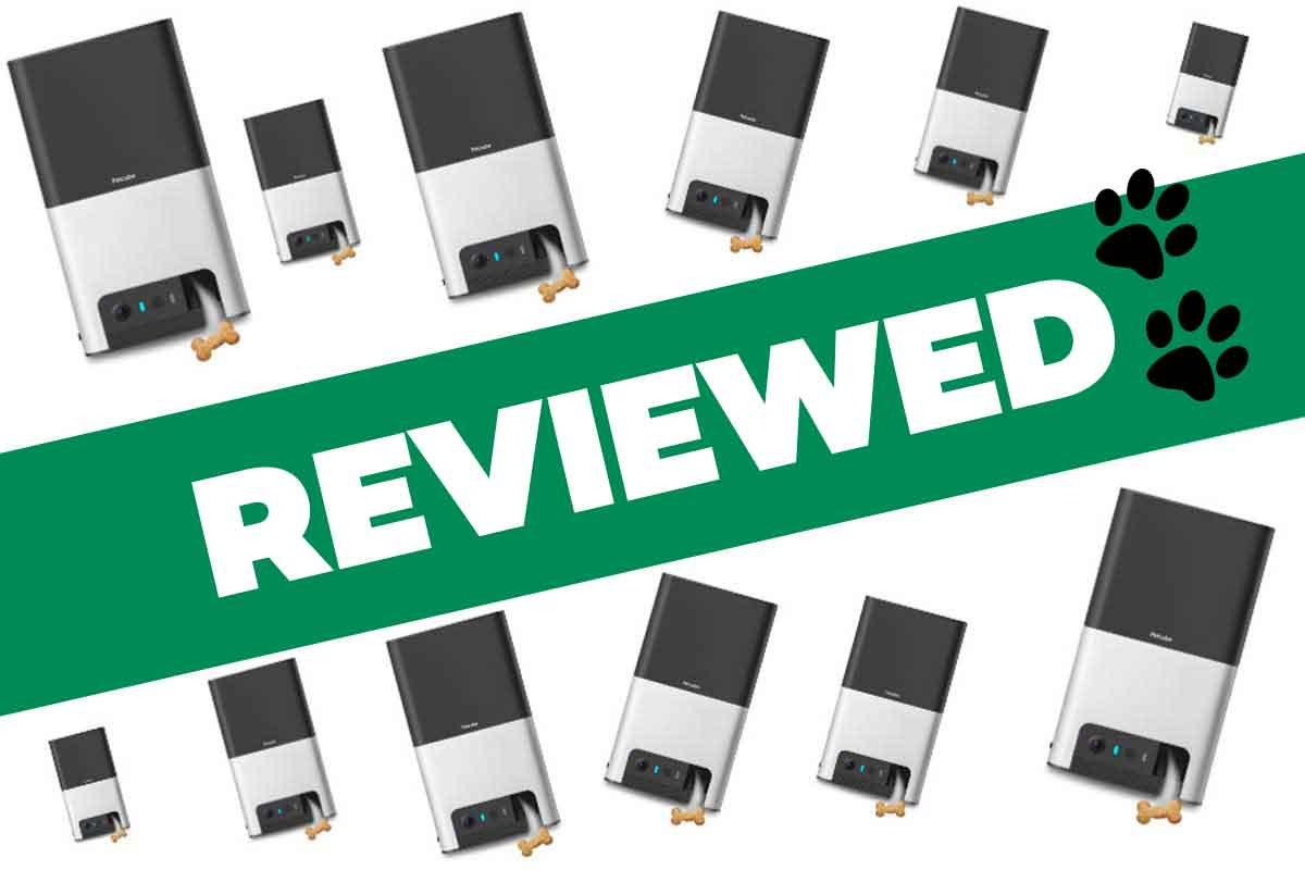 Petcube Bites 2 Review