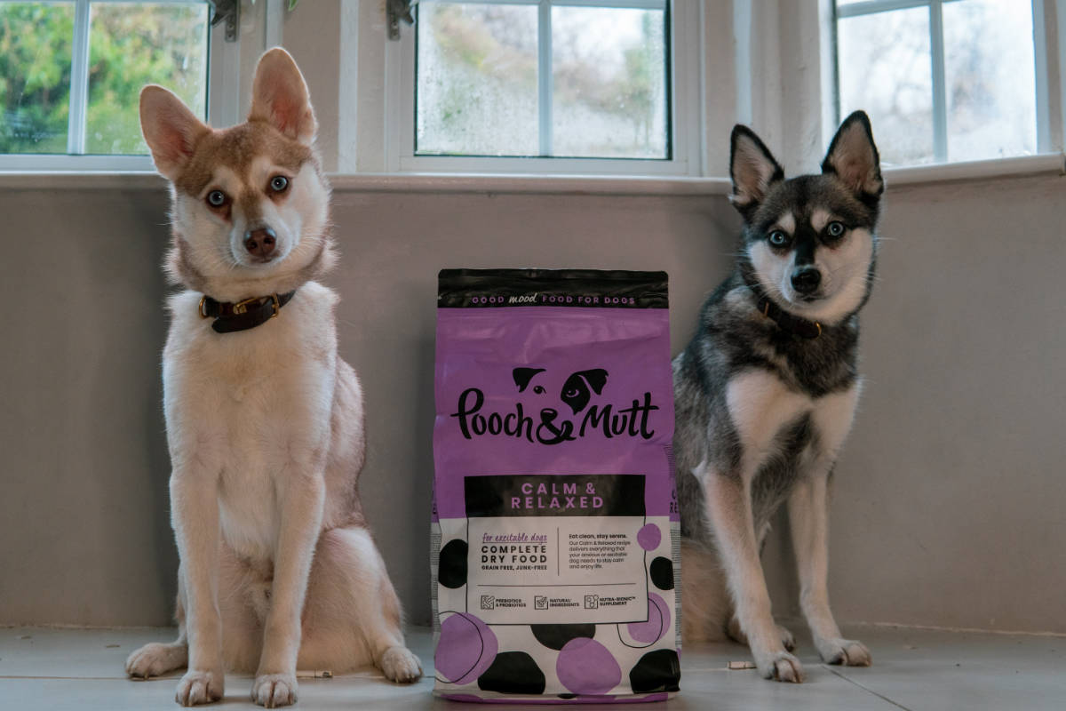 Klee Kai next to Pooch and Mutt kibble (Photo: lifewithkleekai / Instagram)