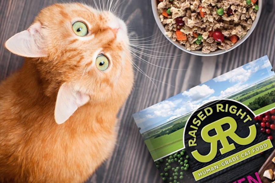 Raised Right cat food (Photo: Raised Right)