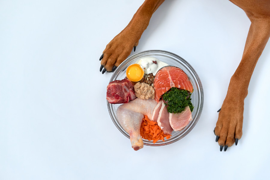 Raw dog food (Photo: Adobe)