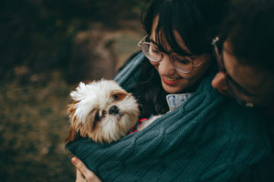 How Dogs Can Have Positive Impact On Relationships