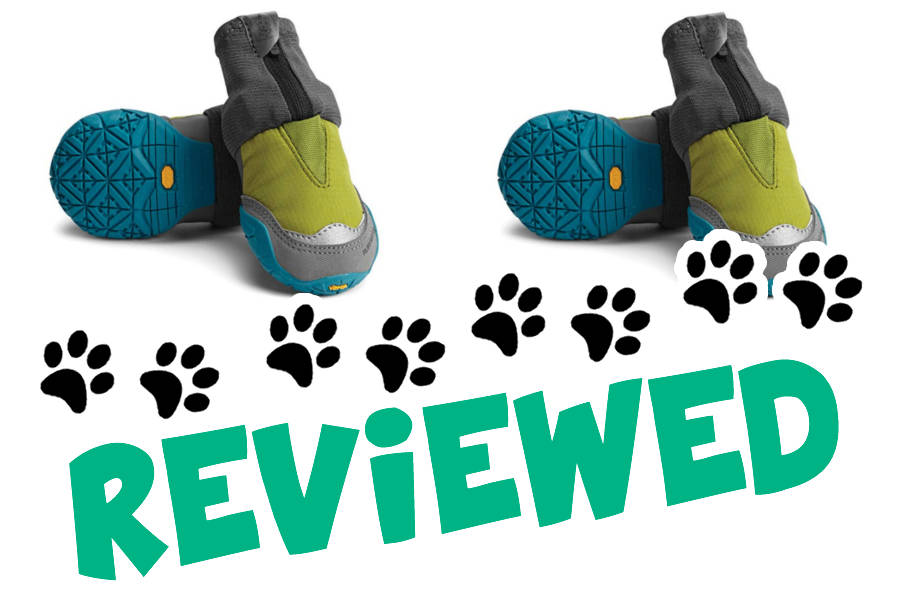 Top 8 best dog boots in 2019