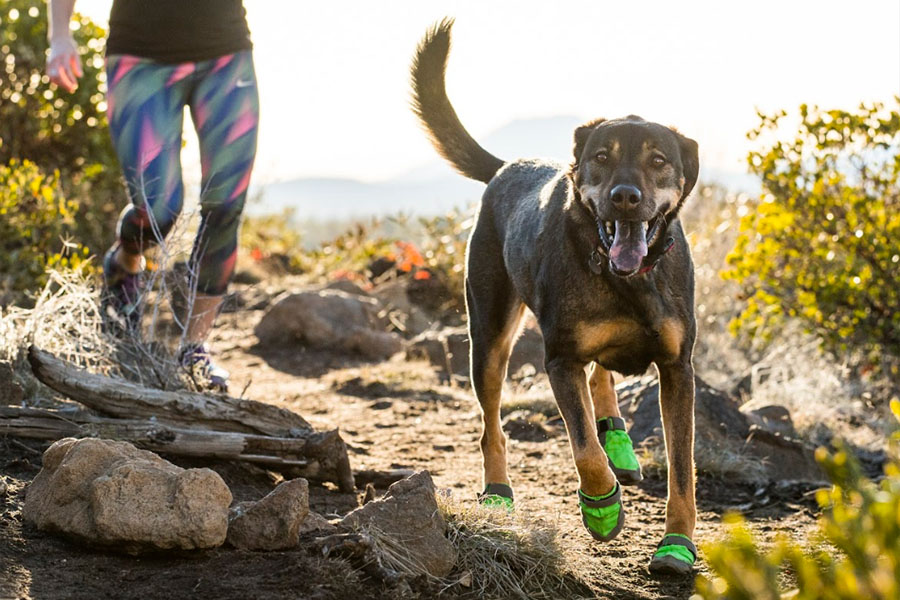 Ruffwear Summit Trex boots (Photo: Ruffwear)