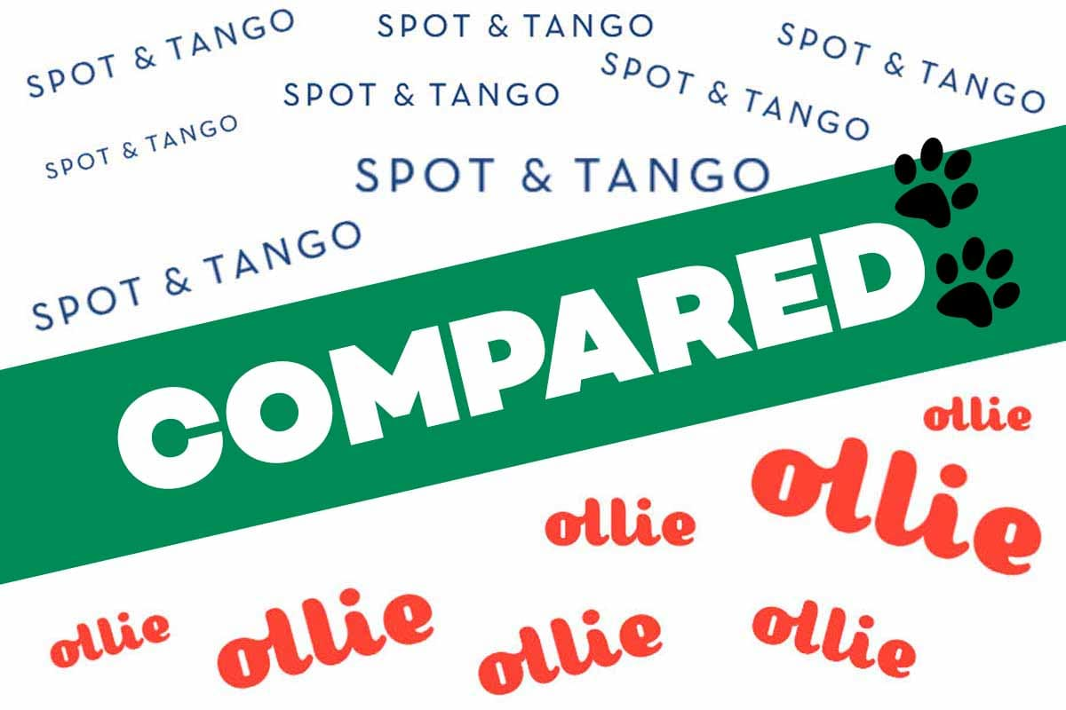 Spot & Tango Vs Ollie Dog Food Reviews