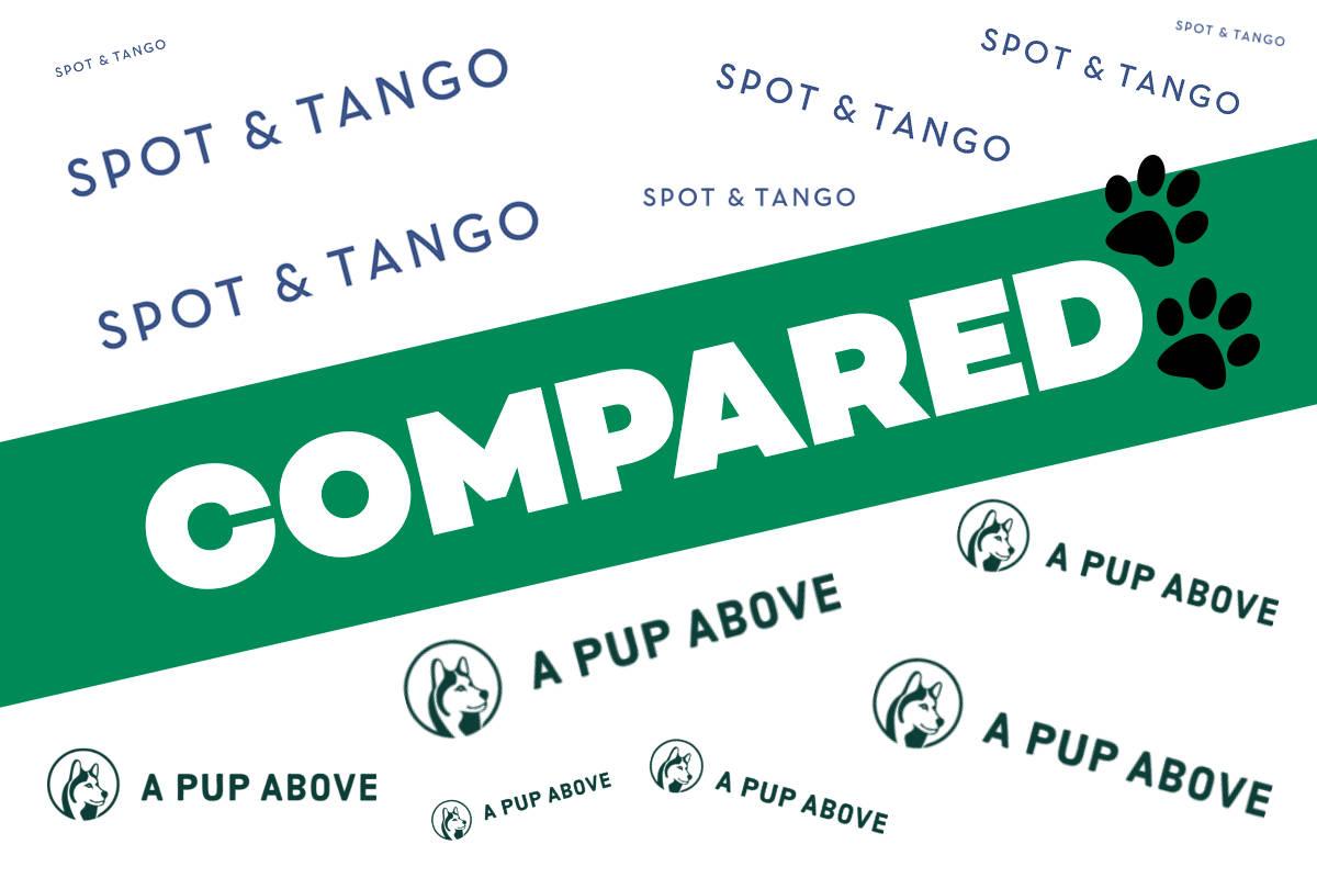 Spot & Tango vs A Pup Above