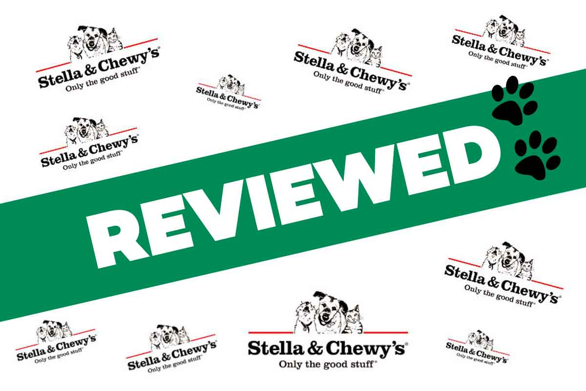 Stella & Chewy's Raw Dog Food Review