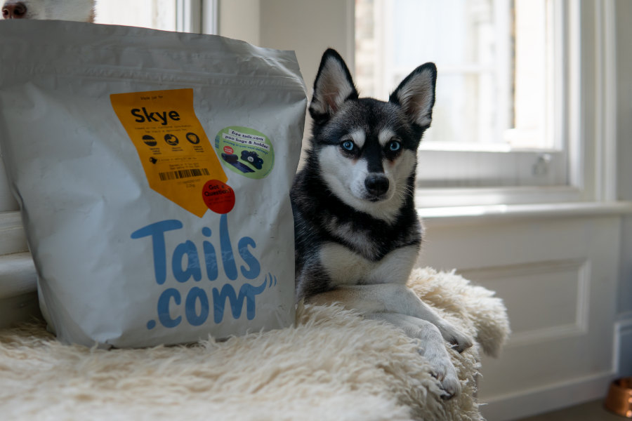 Copper and Skye with their Tails dog food (Photo: @lifewithkleekai / Instagram)