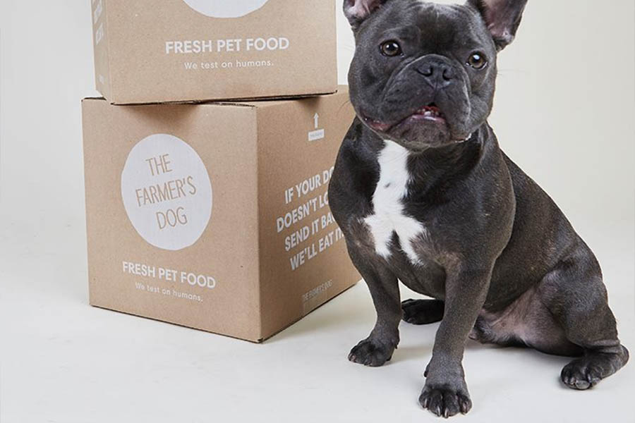 The Farmer's Dog was founded in 2014 (Photo: The Farmer's Dog)