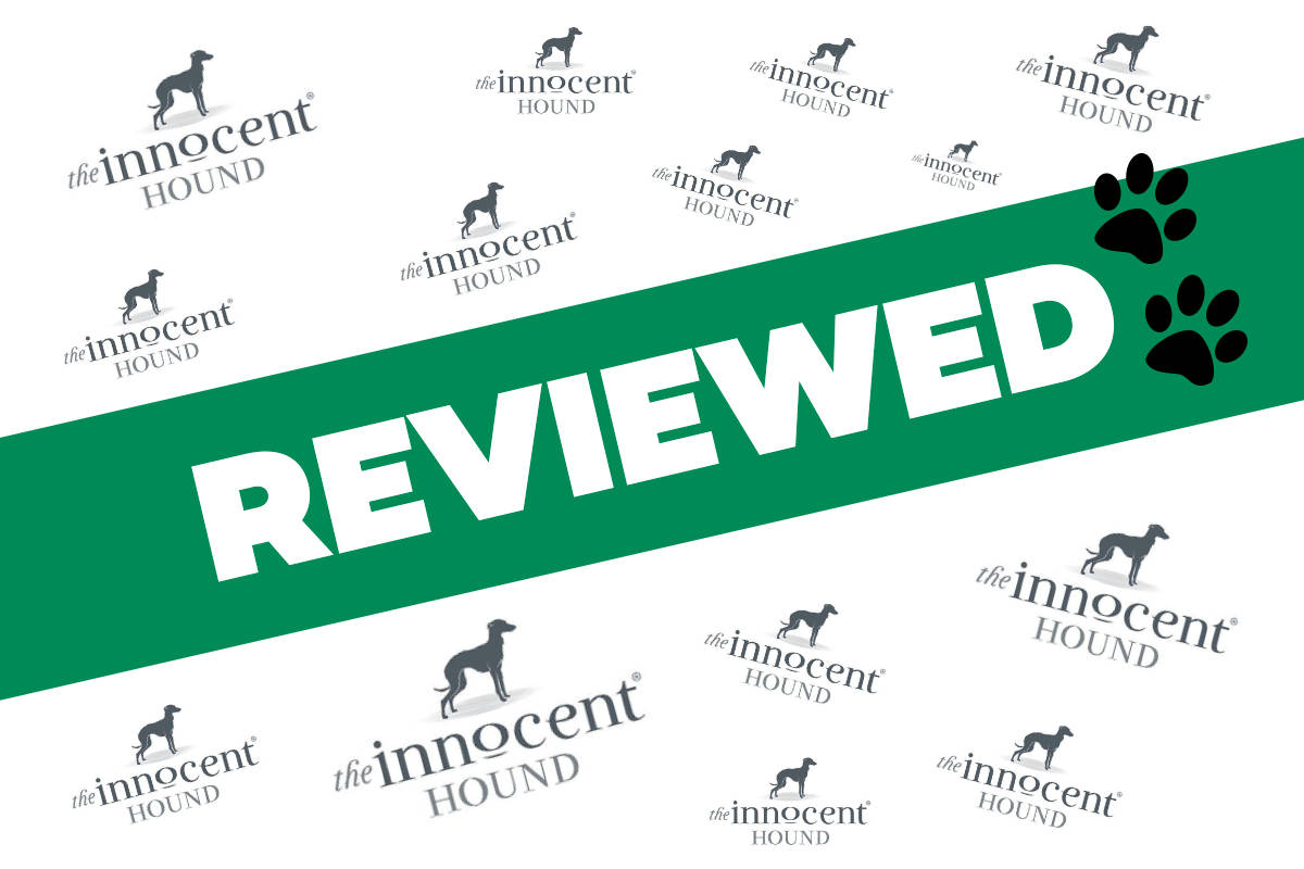 The Innocent Hound review