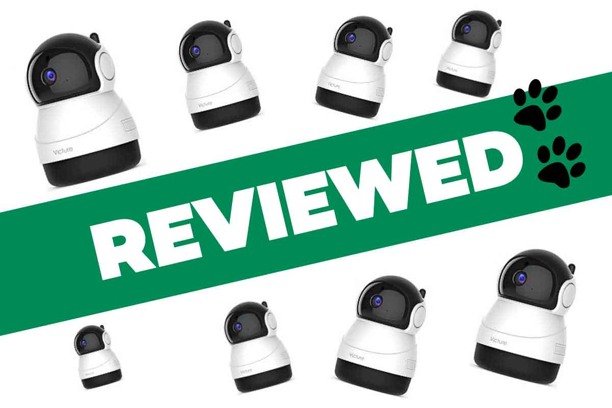 Victure Wifi Camera Review