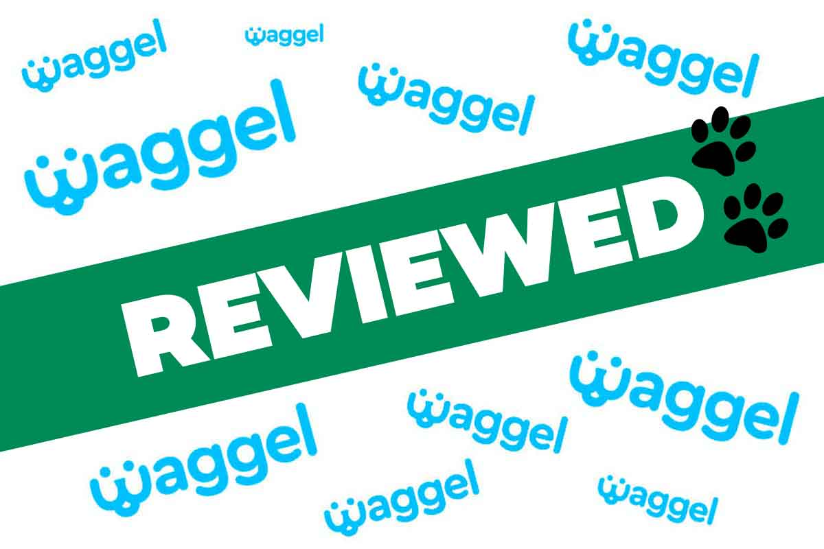 Waggel Review