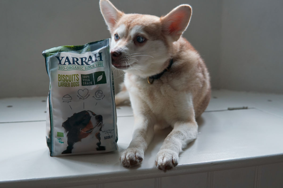 Yarrah Dog Treats (Photo: lifewithkleekai / Instagram)
